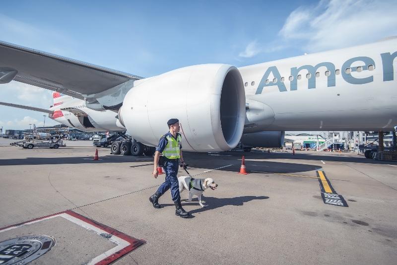 領犬員Edwin在機場執勤不但能與狗隻工作,更可接觸飛機,一次過滿足兩個願望。