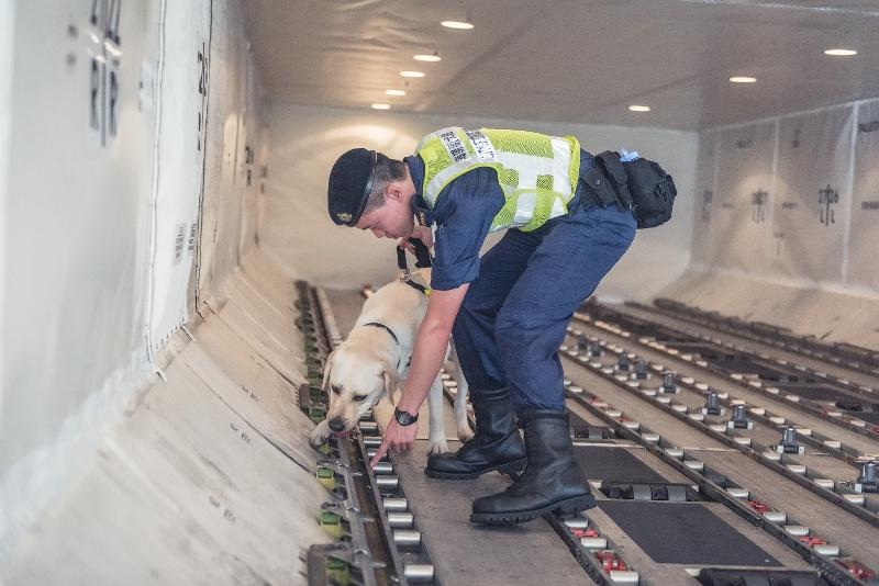 由行李認領大堂到飛機內艙,Edwin與Vassos滴水不漏地守衞機場每道防線,以防毒品流入本港。